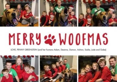 No final o cartão de Natal da família ficou lindo e divertido. (Foto: Arquivo Pessoal/Deanna Greenstein)