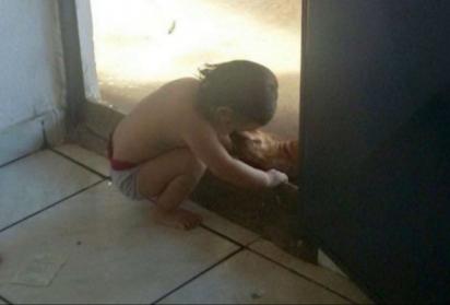 A pequena Annabell ama os animais. (Foto: Arquivo Pessoal/Lawria Melo)