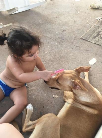 Annabell ama seus cachorros. (Foto: Arquivo Pessoal/Lawria Melo)
