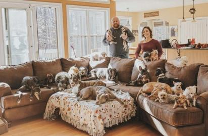 O casal Chris e Mariesa Hughes cuidam de 21 cães resgatados. (Foto: Facebook/Chris Hughes via Dogspotting Society)