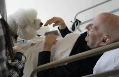 Jeff Philipson, 80, certo, sorri ao visitar Zeus. (Foto: Reprodução/Associated Press)