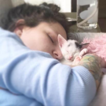 Heather ama a gatinha Clove. (Foto: Instagram/fostermotherofkittens)