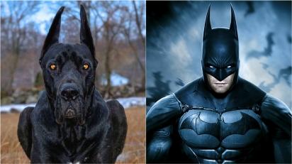 Dogue Alemão chama a atenção pela semalhança com o Batman. (Foto: Instagram/enzo.greatdane | Divulgação/.Play Station)