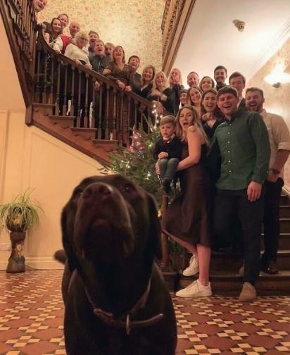 Enquanto todos se espremem, o cão esperto sabe bem como se destacar na foto. (Foto: Divulgação/Bored Panda)
