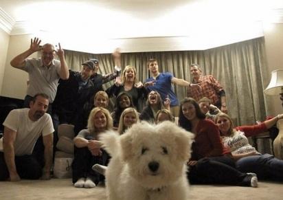 Era para ser uma foto em família, mas…(Foto: Divulgação/Bored Panda)