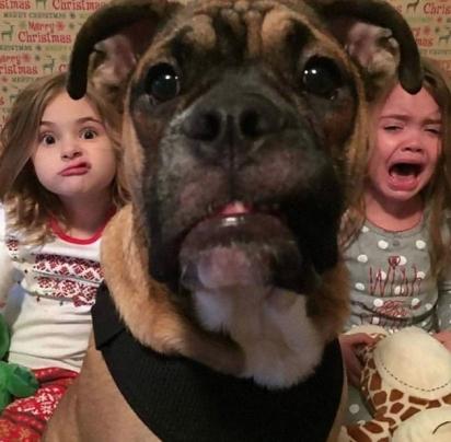As garotinhas não pareciam muito interessadas em tirar foto. Ainda bem que o cão estava ali para salvar a foto, né? (Foto: Divulgação/Bored Panda)