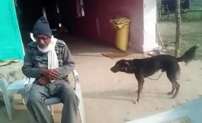 O fazendeiro, Om Narayan Verma, doou metade de sua propriedade para o cachorro Jacky. (Foto: Reprodução Twitter/@Anurag_Dwary)