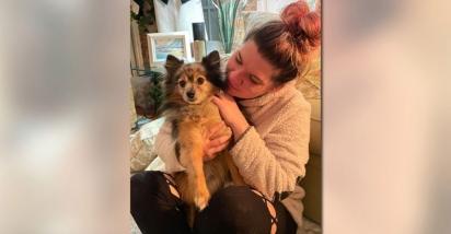 O cão se reuniu com a família no dia 5 de janeiro. (Foto: Reprodução/My Fox 8)