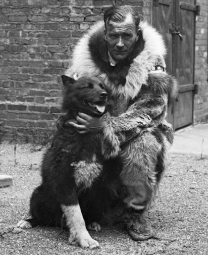 O cão Balto. (Foto: Reprodução/ Wikimedia Commons)