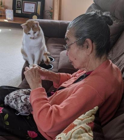 Lucas, o gato, fica atento a cada movimento da idosa. (Foto: Arquivo Pessoal/Alana)