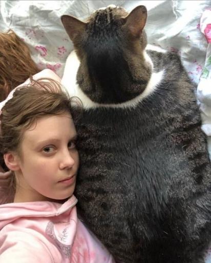 O gato Squishy parece maior do que a sua dona Lauren. (Foto: Caters News Agency)