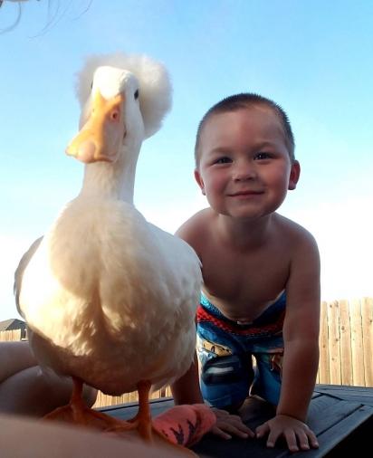 Tyler com o seu amigo pato Bee. (Foto: Instagram/mr.tandbee)