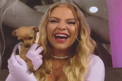 A cachorrinha invadiu a aparição de Luisa Sonza no programa Encontro sob o comando de Fátima Bernardes. (Foto: Reprodução/TV Globo)
