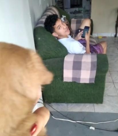 Namorada chega com filhote e rapaz diz não querer por ter muitos cachorros em casa. (Foto: Reprodução TikTok/@vitorsantos0124)