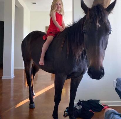A garotinha KK e a égua Sauce têm cinco anos e ambas são muito amigas.