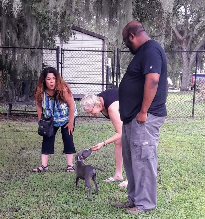 Foto da esquerda: Michelle Murray, Lisa Gray e Jerry Murray. O casal se reuniu com Zues alguns dias após seu resgate.
