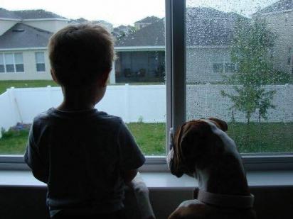 Na foto, Carter ao lado do seu falecido cão, Holly.