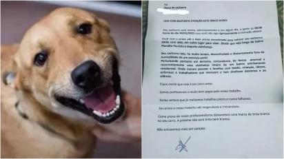 Cachorrinha vira-lata caramelo é ameaçada de morte por criminosos por que 'late demais' em casa.