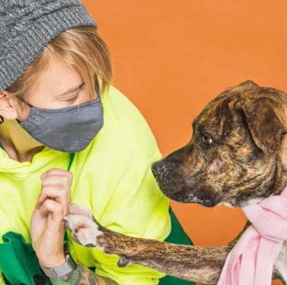 Alisha foi a salvadora da cadela Athena, oferecendo amor e cuidado no lar temporário enquanto aguardava um lar definitivo.
