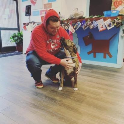 O reencontro de Dylan com a sua cadelinha foi emocionante.