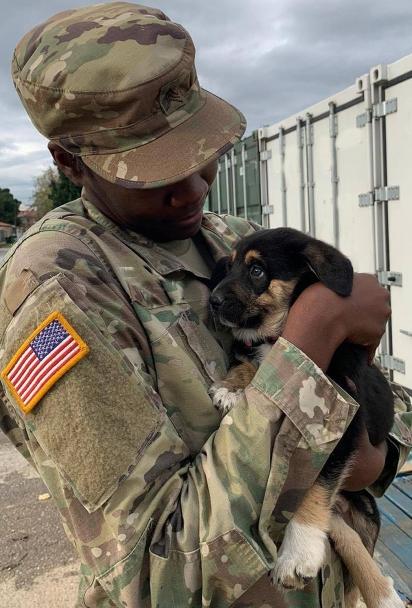 O vínculo afetivo criado por Char e a cachorrinha PupPup, não permite que a soldado volte para os EUA sem a filhote.