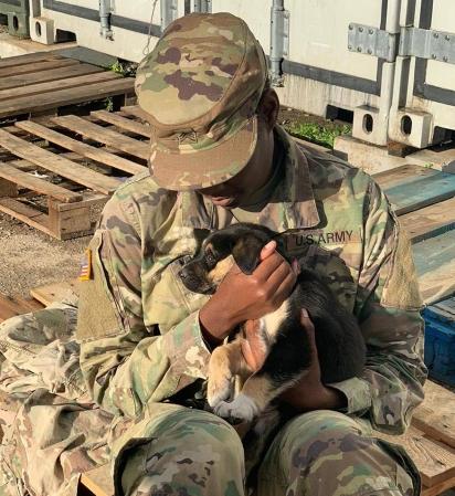 Char tem pedido ajuda a instituição Paws of War para trazer a filhote para os EUA.