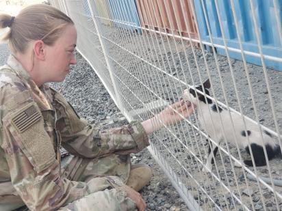 A organização ajudou a soldado a trazer dois gatinhos do Oriente Médio para os EUA.