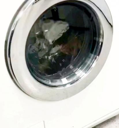 O furão ficou preso durante todo o ciclo da máquina de lavar (100 minutos).