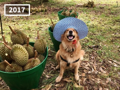 A cada foto é um chapéu lindo e estiloso.