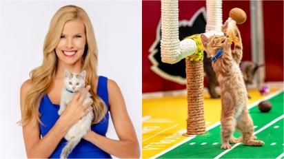 Kitten Bowl, evento que divulga os gatos disponíveis para adoção nos Estados Unidos, vai ao ar no próximo domingo.