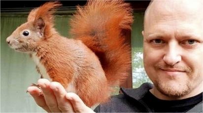 Homem salva esquilo ferido e roedor se nega a ir embora da sua casa; relação dura 7 anos.