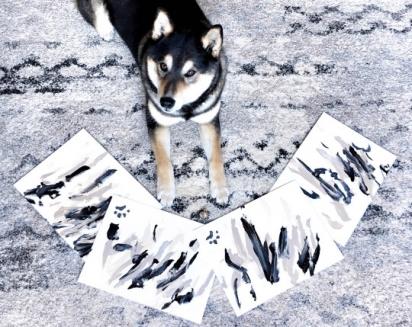 O cachorrinho já vendeu 288 pinturas.