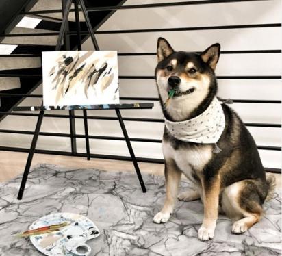 O cãozinho tem se tornado muito popular com suas pinturas.