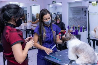 Mesmo com quatro meses de portas fechadas por conta da pandemia, a Uau Escola de Estética Animal, voltada para profissionais do mercado pet, ainda cresceu 8% em 2020.