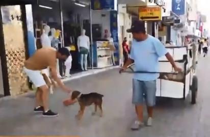 O cachorrinho acompanha o seu dono Adriano por todos os lugares.