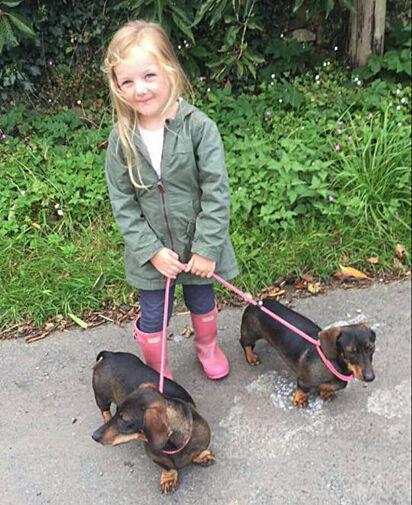 Poppy e os cães salsichas.