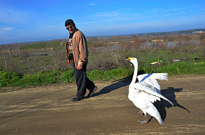 Recep e Garip gostam de sair e caminhar juntos.