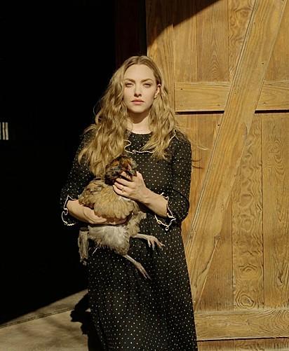 Qual será o nome dessa galinha? Audrey Hepburn?