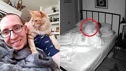 Tutor instala câmera no quarto para flagrar as bizarrices que seu gato faz durante a noite.