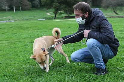 Luís Pereira, de Santa Maria da Feira (Portugal), um sem-abrigo recusou moradia para ficar junto da sua cadela, Kika.