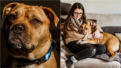 A linda história de Charlotte Mullarkey e sua cachorrinha Bumble aconteceu em Exodor, Inglaterra.