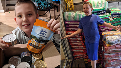 O que motivou o menino a arrecadar alimentos para pets foi a perda da sua cachorrinha.