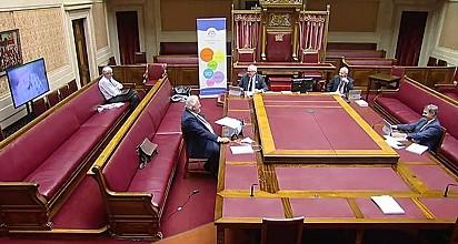 Membros da Assembleia observando a cena se desenrolar no Zoom.