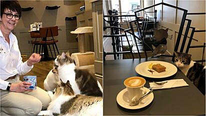Mulher decide largar a carreira de enfermagem para empreender em cat cafe.