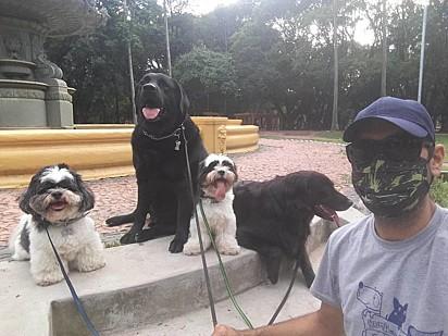 O passeador e mais alguns cachorrinhos.