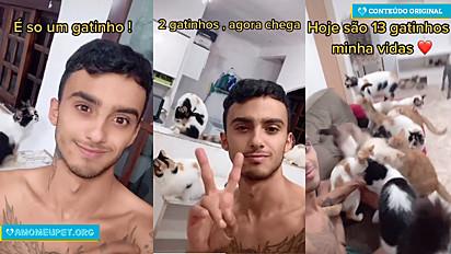 Morador de São Paulo, ironiza as pessoas que julgam donos de gatos por adotarem mais de um felino.