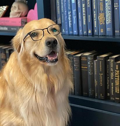 Marshall Mae Rogan com carinha de intelectual é muito fofo.