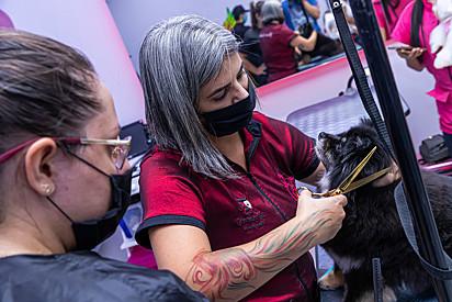 Para Natália Espinosa, características femininas como atenção e afeto, são importantes para o mercado pet.