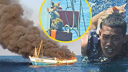 Um marinheiro herói nadou 15 metros e salvou quatro gatinhos em um barco em chamas na Tailândia.