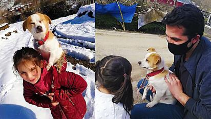 Em um vilarejo na Turquia, menininha de apenas 8 anos caminhou mais de 1 km com cachorro nas costas para encontrar atendimento veterinário.